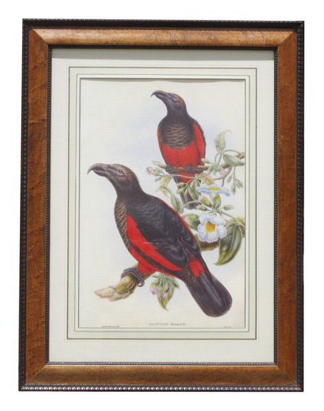# 4274 Pair of Bird Prints